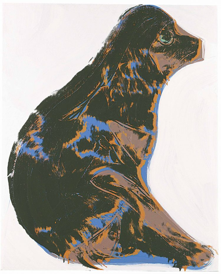 Warhol retratos de perros