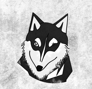 Kira, husky siberiano