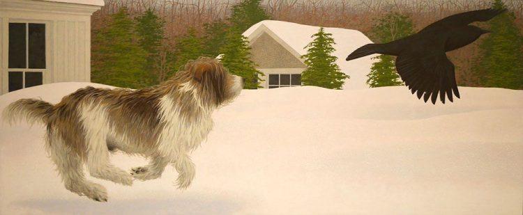 Terrier perro colville