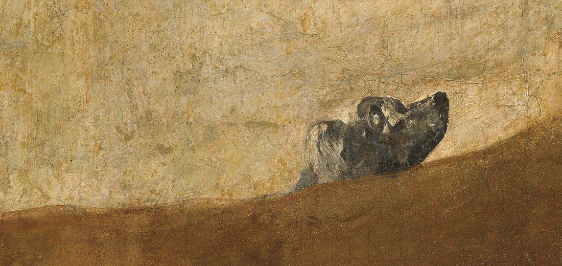 perro goya